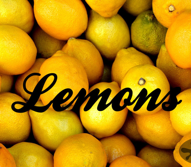 Lemons: More Microfiction